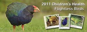 2011 Children's Health - Flightless Birds