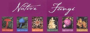 New Zealand's Native Fungi