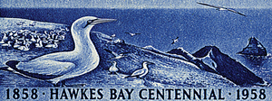 Hawkes Bay Centennial