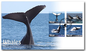 Niue Whale Watching