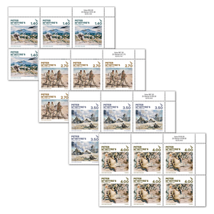 2020 Peter McIntyre's World War Two Set of Value Blocks