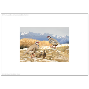 2019 Game Bird Habitat Limited Edition Artist Print