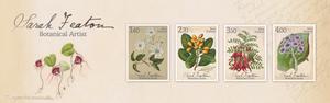 Sara Featon - Botanical Artist | NZ Post Collectables