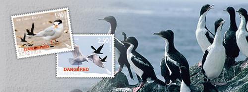 Endangered Seabirds