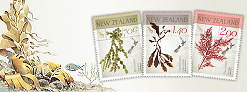 New Zealand Native Seaweeds