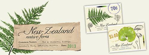 New Zealand Native Ferns