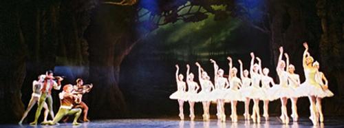 Royal New Zealand Ballet 50th Anniversary