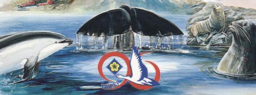 Taipei '96