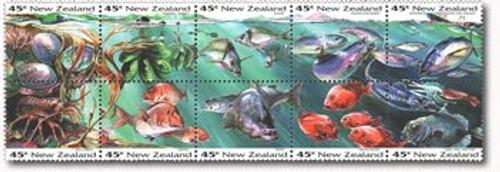 Sealife Booklet