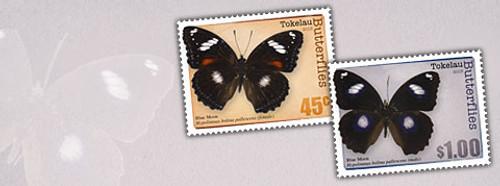 Tokelau Butterflies