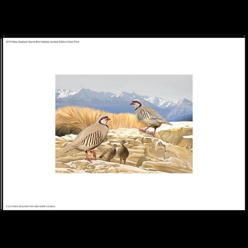 2019 Game Bird Habitat Limited Edition Artist Print
