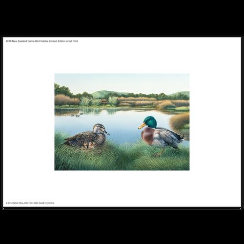 2018 Game Bird Habitat Limited Edition Artist Print