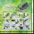 Birds of Vanuatu Definitive Souvenir Sheet