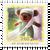 2020 New Zealand Bear Hunt Set of Mint Stamps