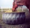 Rubber Hay Feeder