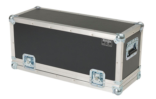 Positive Grid Spark Smart Amp Modified Roadie Case