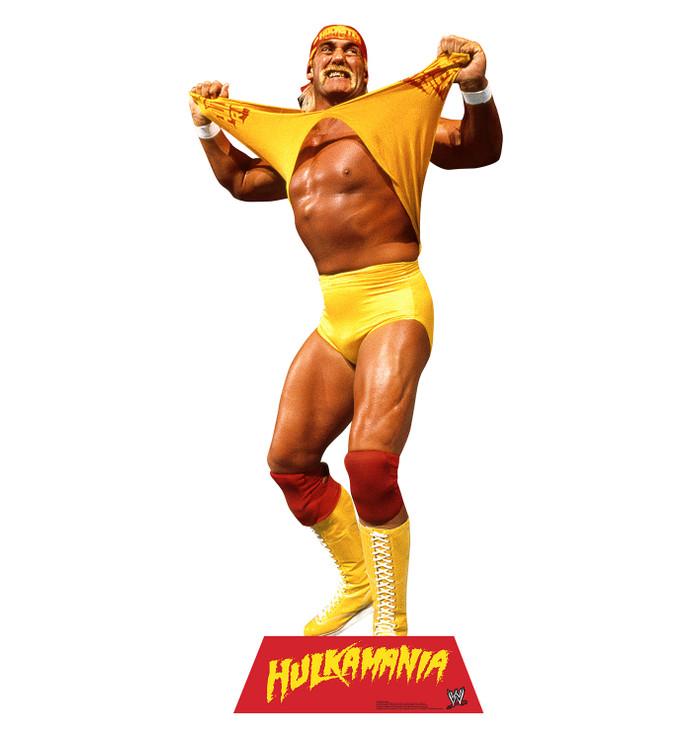 Hulk Hogan - WWE