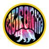 California Bear Circle City Sticker - 2 Dozen (6 Colors)