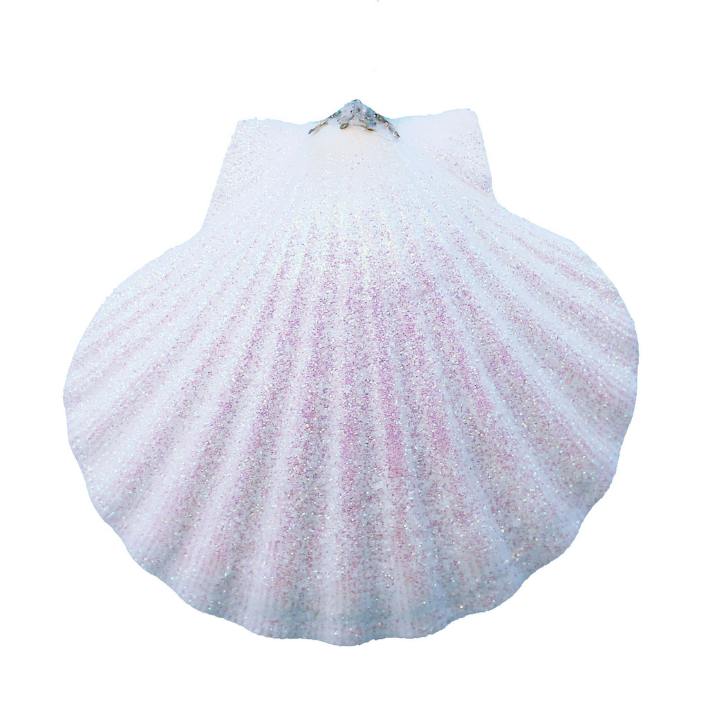 Large White Pectin Seashell Glitter Ornament - Made in Huntington Beach, California, USA