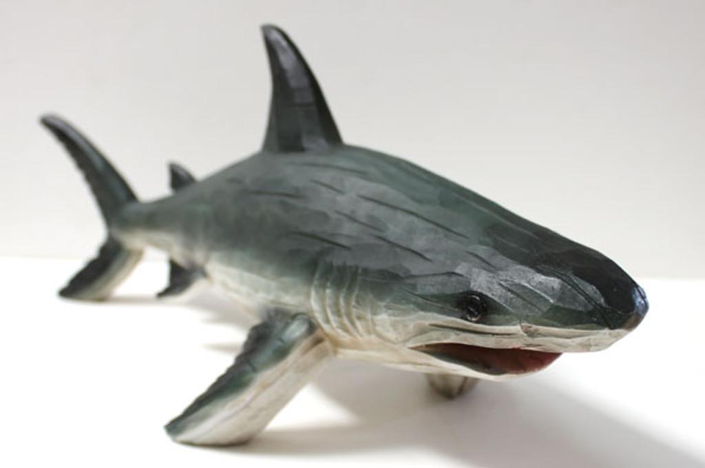 Wood Looking Shark