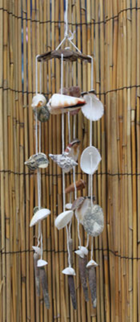 Small Coconut Top Shell Chime