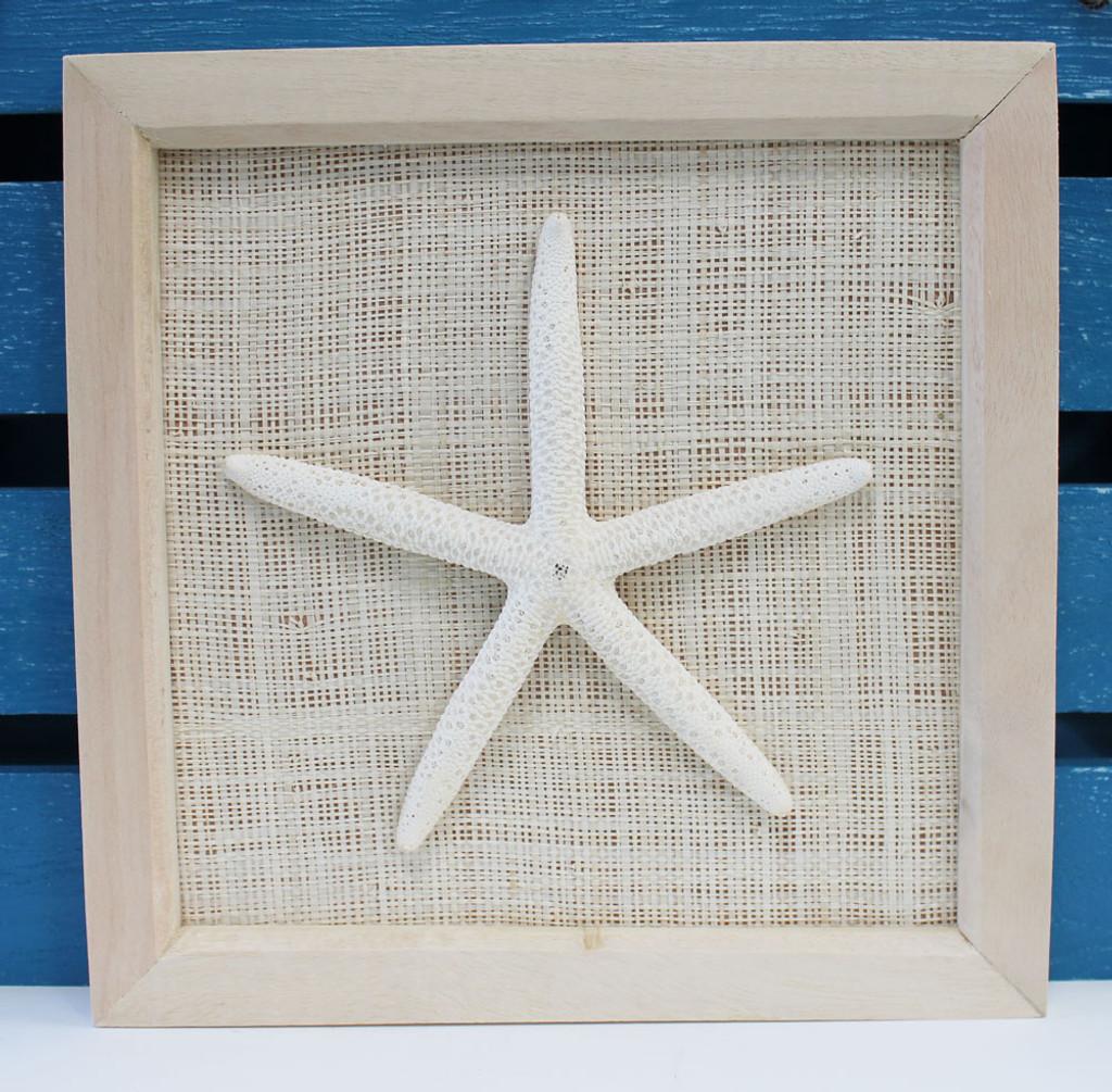 Framed White Finger Starfish
