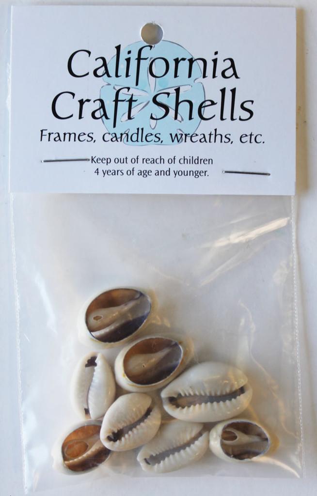 Cut Cowrie Shell Craft Bag