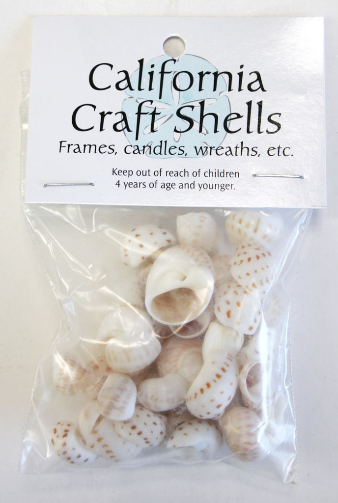 Nautica Onca - Spotted Moon Shells