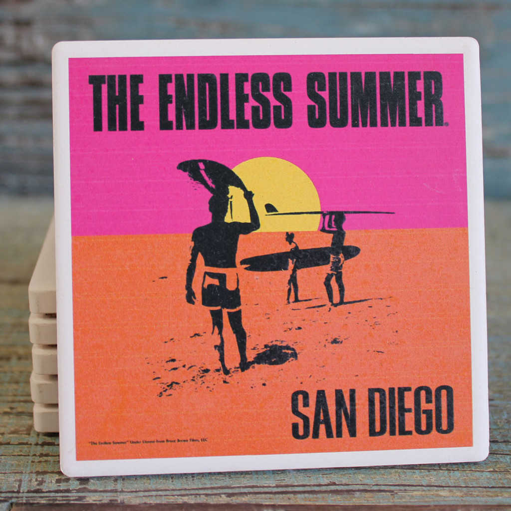 The Endless Summer coaster