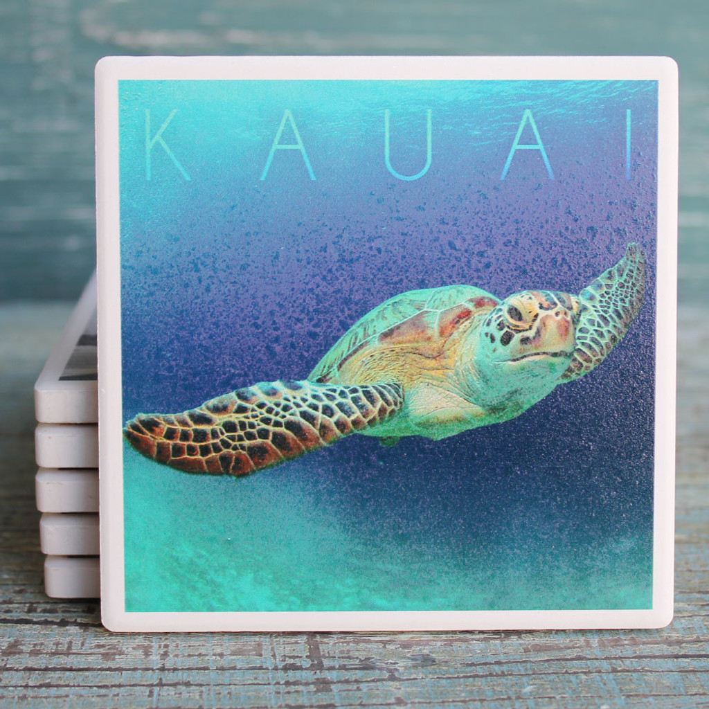 Kauai Sea Turtle Coaster