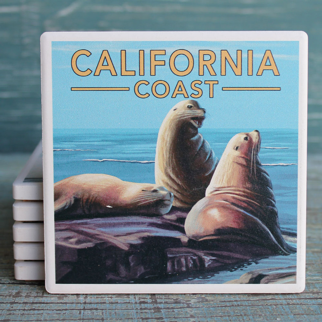 California Sea Lions Coaster
