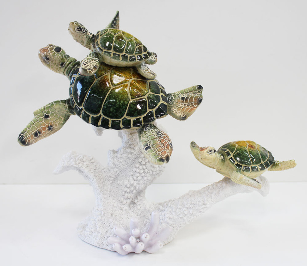 Sea Turtle Family on Coral