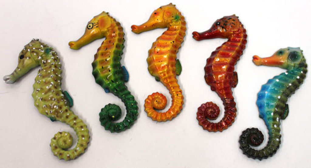 Colorful Seahorse Magnets