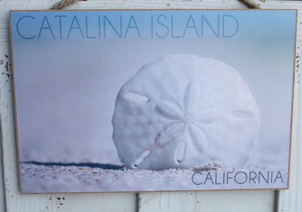 Catalina Island Sand Dollar
