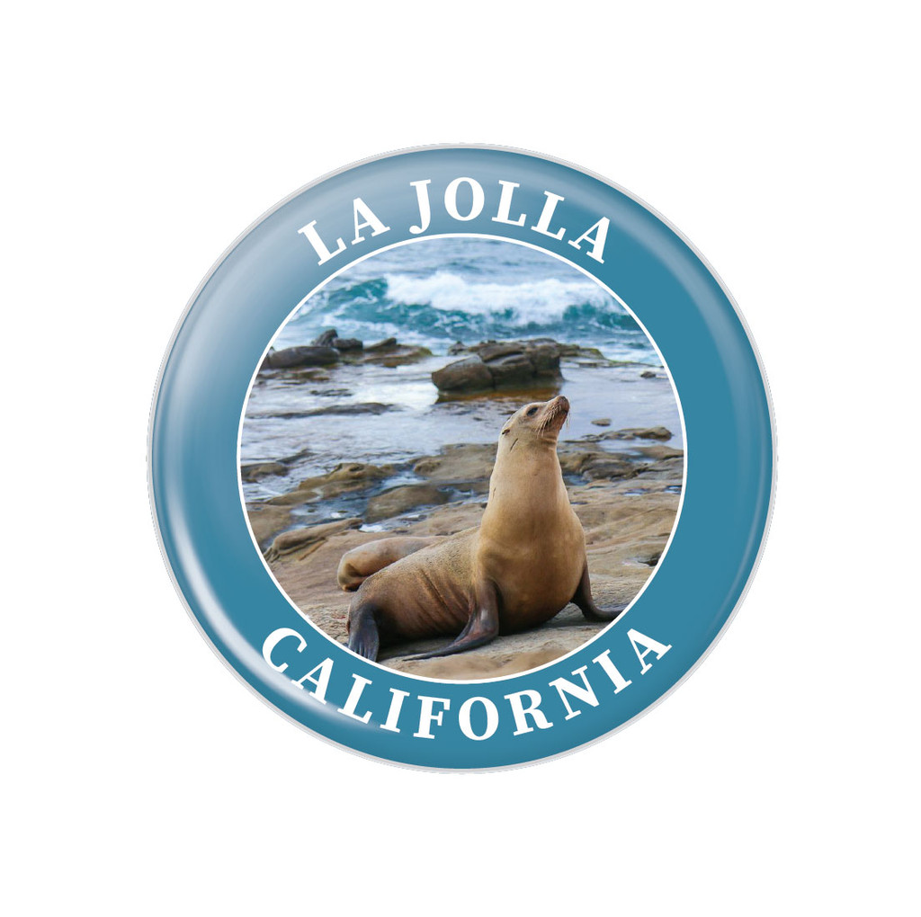La Jolla Sea Lion Button