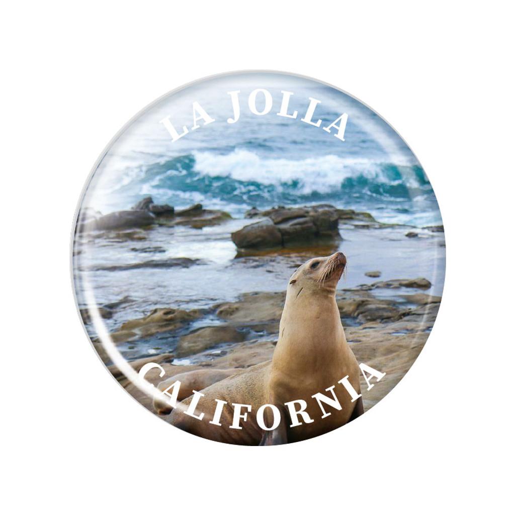 La Jolla Sea Lions Magnet