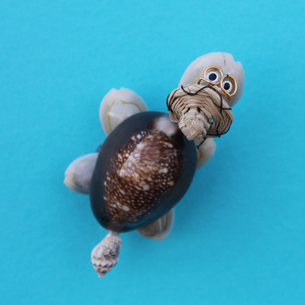 Shell turtle magnet