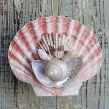 Hand-Crafted Irish Flat Shell Collage Ornament