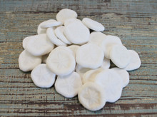 Sea Cookies - Small Sand Dollars