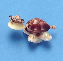 Novelty Shell Turtle