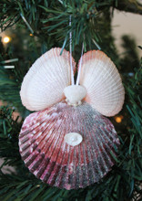 Purple Pectin with White Wing Seashell Angel Ornament