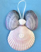 Lavender Wing Purple Pectin Angel