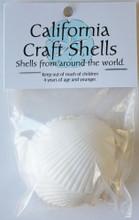 White Pectin Shell Craft Bag