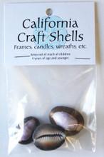 Snake Head Cowrie Shell Craft Bag