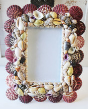 Multi-Color Seashell 3.5 x 5 Picture Frame