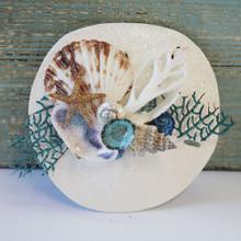 Keyhole Sand Dollar Sea Fan Collage Magnet