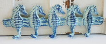 Seahorse 5 Hook