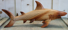 Wood Finish Shark