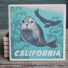 California Harbor Seals Coaster