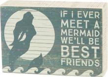 If I Ever Meet a Mermaid...